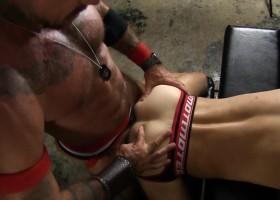Pig Week Gorilla Porn Sex Orgy 1